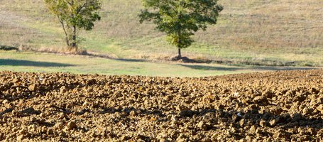 The 3 stages of soil cultivation